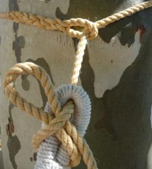 Corde épissurée pour hamacs autour d'un arbre